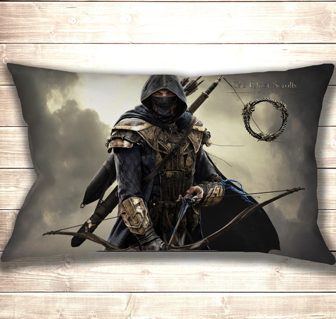 Подушка 3D The Elder Scrolls Online Rogue Assasin