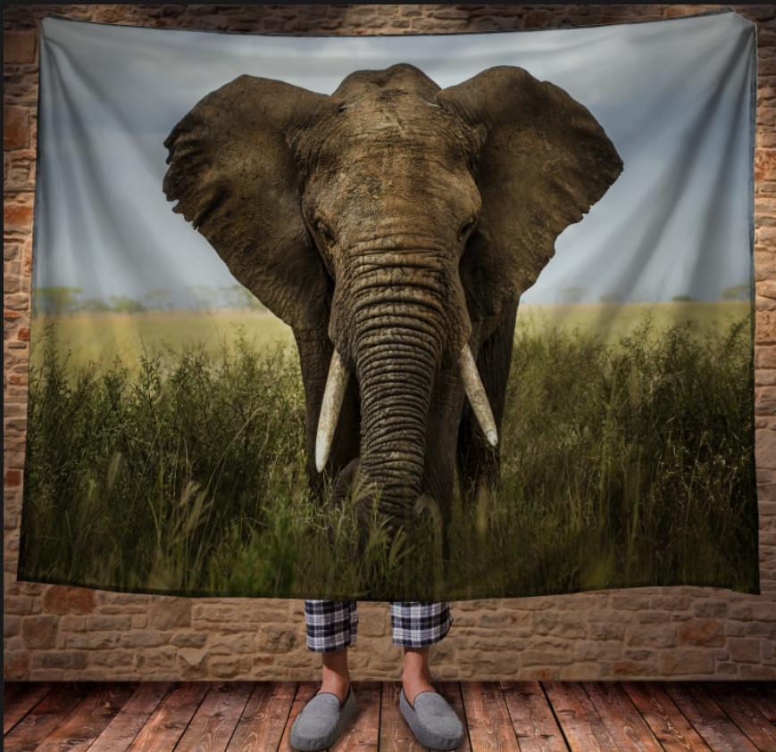 Плед з 3D принтом - Слон