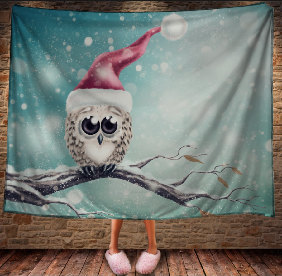 Плед з 3D принтом Мімімішна сова в шапці Санта Клауса. Дивосвіт